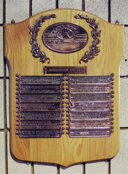 Honour Roll of Outstanding Teams Plaque #2